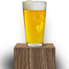 REX LAGER Brewboard DROUGHT